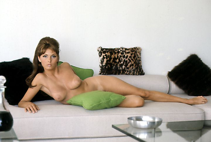 Images barbara feldon naked women with clothes