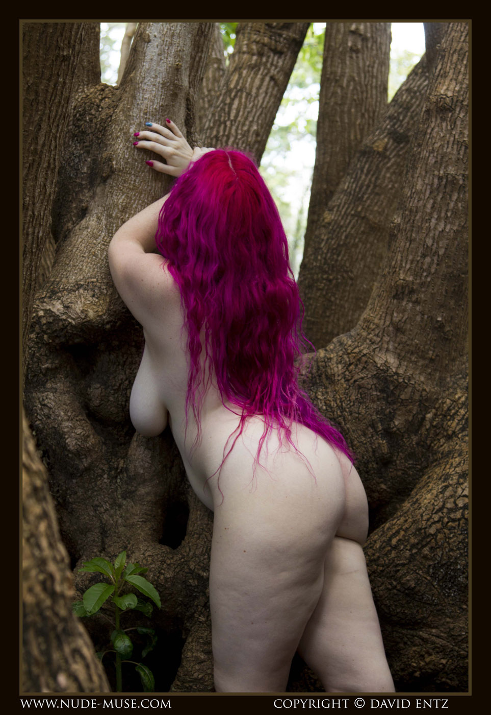 Avalon Pink Fairy Cosplay Nude Muse 7-3325