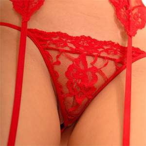 Alison Angel Sheer Red Lingerie