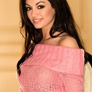 Kaytee Bees Sweater Wearing Playmate